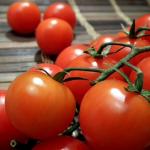 Сорт помидор Дружок